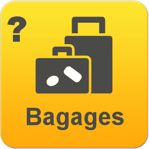 CheckMyBus Assistance Bagages