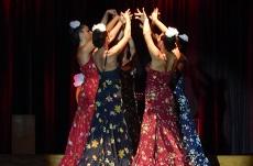 Flamenco à la Villette